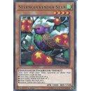 Yu-Gi-Oh! - DANE-DE024 - Sternguckender Star - Deutsch -...