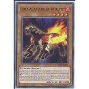 Yu-Gi-Oh! SDSB-DE011 Grosalamander Wolfie 1.Auflage Common